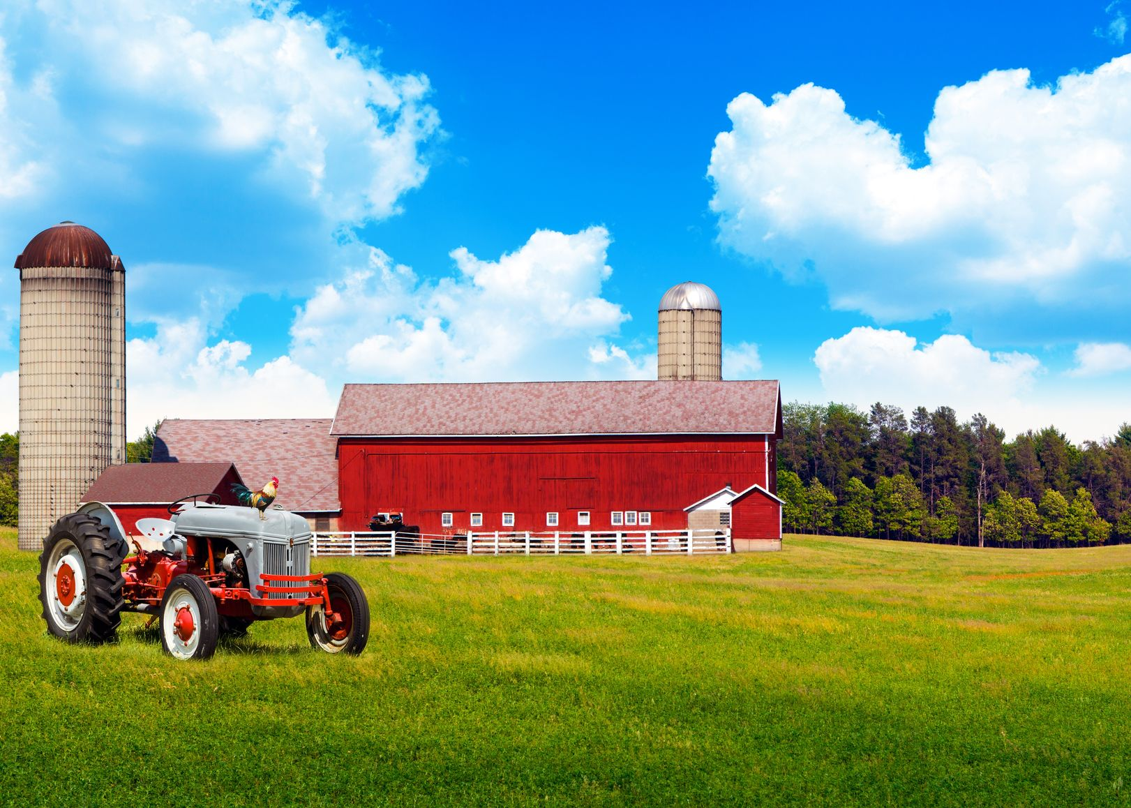Escondido Farm & Ranch Insurance